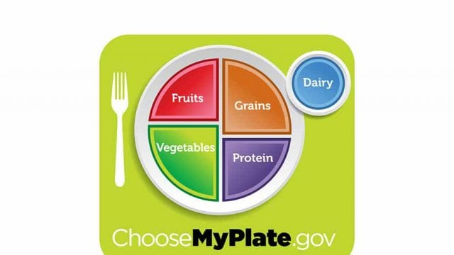 choose my plate graphic